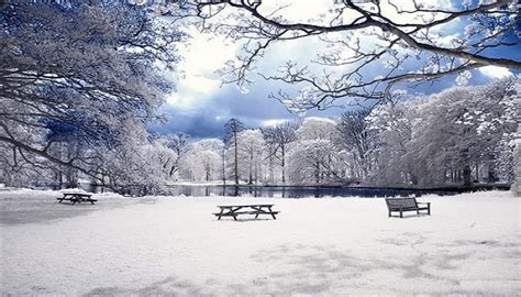 imagenes lindas de navidad con nieve vive la vida con estas bonitas fotos de paisajes nevados