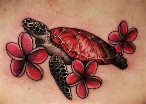 best 25 small turtle ideas 100 tribal turtle dreamcatcher 25 unique