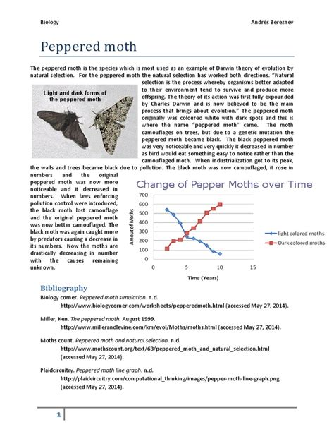 Peppered Moth Simulation Worksheet Answers by Pictures Peppered Moth Worksheet Getadating