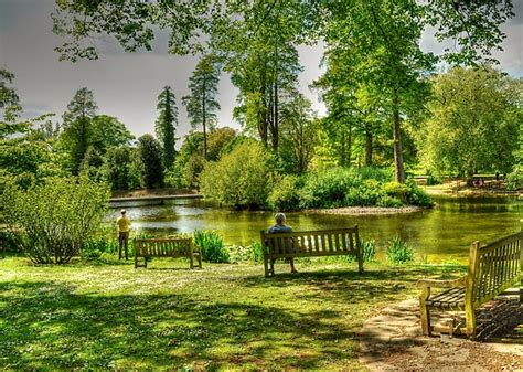 park bench scene i just wanna sit on that park bench and take it all in sackler lake kew gardens the