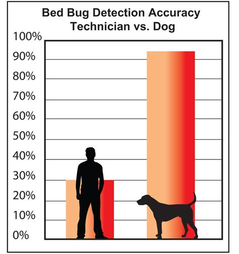 Free Bed Bug Inspection by Free Bed Bug Inspection Bed Furniture Decoration