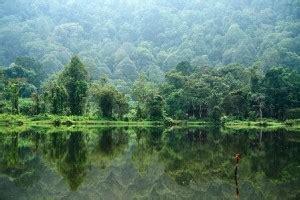 membuat puisi tentang gunung puisi tentang alam dan hutan ngebro com