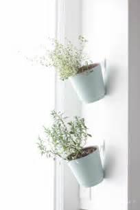 Hanging Herb Planter by Indoor Herb Garden Hanging Planter Tutorial