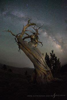 75 twilight ridge led tree stand ankh123 deviantart