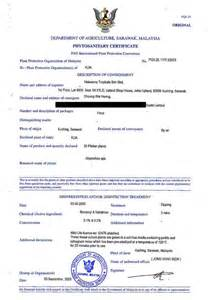 L Agyaayla Import Malaysia 1pc phytosanitary certificate sle malaysia gallery certificate design and template