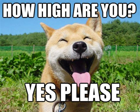 Yes Please Meme - how high are you yes please misc quickmeme