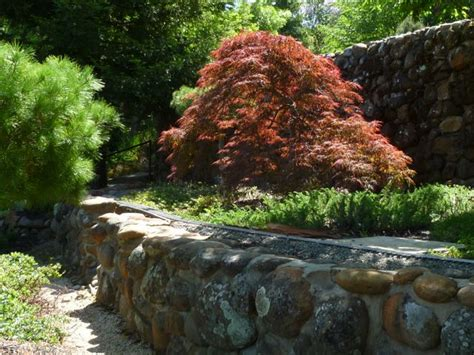 The Farmer Fred 174 Rant Northern California S Horticultural Maple Rock Gardens
