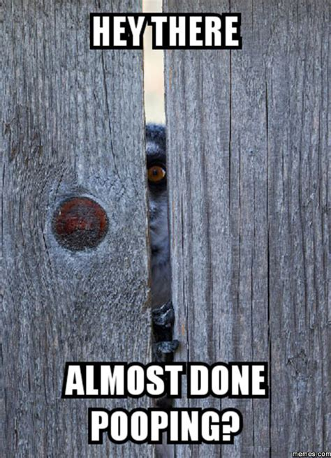Public Bathroom Meme - home memes com