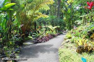 hawaiian tropical botanical garden big island