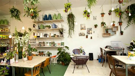 best plant store in amsterdam top 10 concept stores in amsterdam i amsterdam