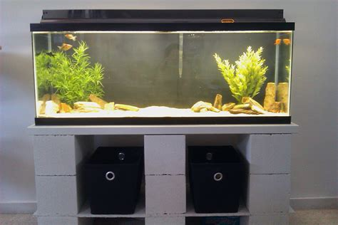 100 gallon fish tank on second floor aquarium checklist setting up a fish tank hirerush