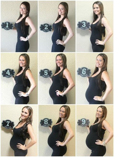 Get Hiltons Baby Bump Look For Less by Best 25 Pregnancy Monthly Photos Ideas On