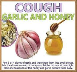 at home remedies for cough kitchen remedy for cough and cold daily inspirations for