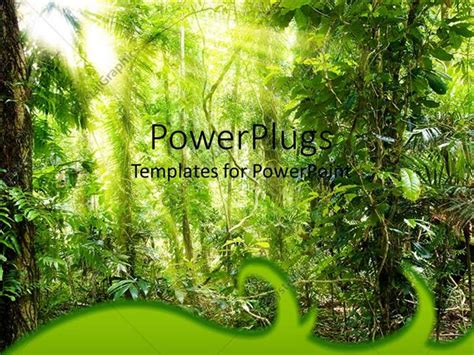 powerpoint template sun filtering through forest tree