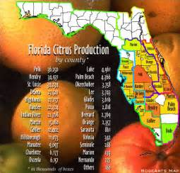 florida orange groves map florida citrus growers shippers of oranges grapefruit
