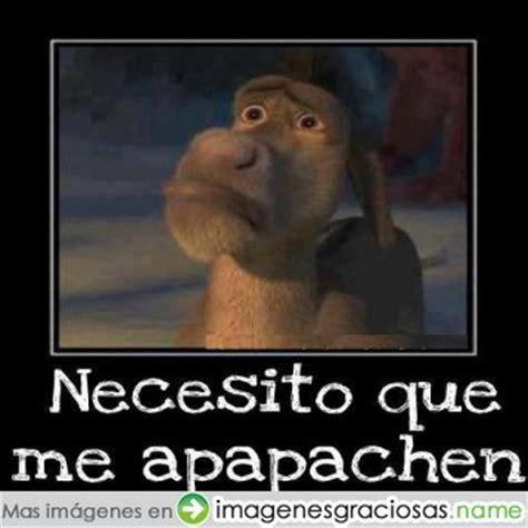Imagenes De Amor Chistosos Del Burro Shrek | imagenes graciosas del burro de shrek imagenes chistosas