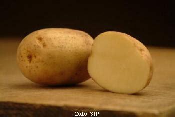 potatisfestival