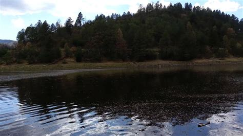 bonito lake nm  mess   forest fire youtube