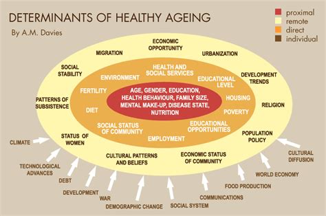 for healthy aging a guide to lifelong well being books simple solutions for planet earth and humanity the best