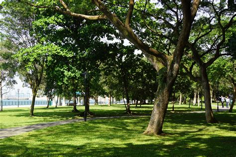 in park parks labrador park our big expat adventure