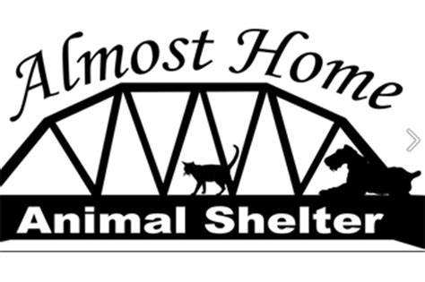 almost home animal shelter opens doors in quinnesec
