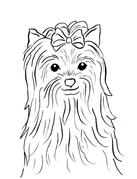 yorkie terrier for free terrier coloring page bell