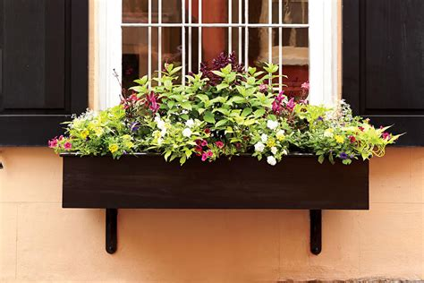 small window boxes small wonders add charm with window boxes southern living