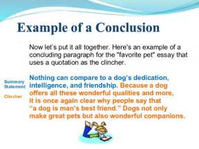 Exles Of Conclusions In Essays by Essay Writing Power Point 1