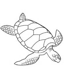 turtle coloring pages for adults coloring pages turtle az coloring pages