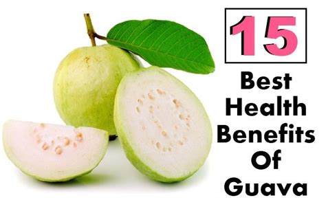 can dogs eat guava 131 best images about diet remedies on health benefits of yogurt 10 top