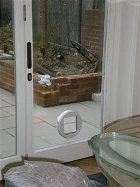 Glass Door Cat Flap Cat Flap In Glass For The Home Cat Glass And Extension Ideas