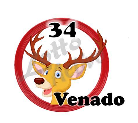 imagenes de animalitos lotto activo datos lotto activo gratis lunes 16 10 2017 lider supremo
