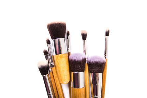 Eyeliner Kuas 5 kuas makeup pilihan untuk pemula journalbeauty