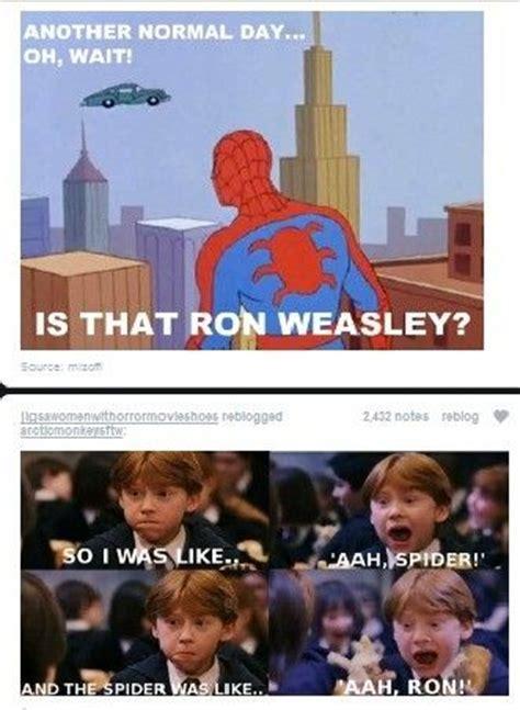 funniest harry potter memes   unbelievably