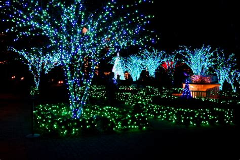 Botanical Garden Of Lights Atlanta Botanical Garden Lights Nights Tom Sullivan