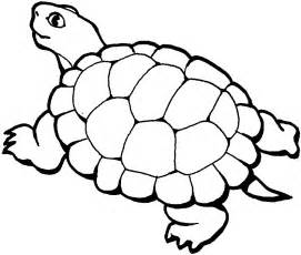 turtle coloring book free printable turtle coloring pages for