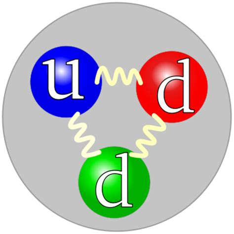 Difference Between Protons And Neutrons by Difference Between Proton Neutron And Electrons