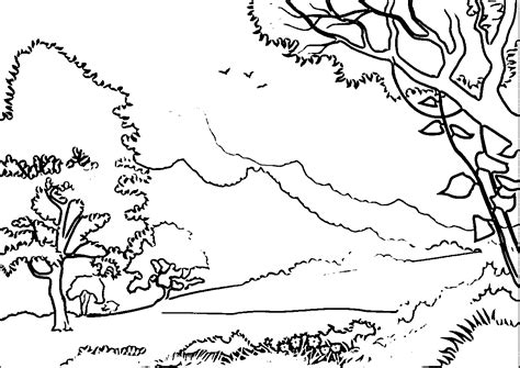 jungle landscape coloring pages coloring pages landscape coloring home