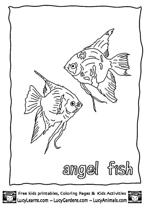 angel fish coloring pages printable tropical angel fish coloring page free print out coloring