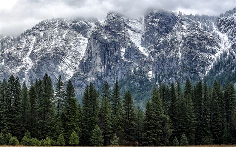 os x yosemite wallpaper for iphone 6 thank apple s os x yosemite announcement for this