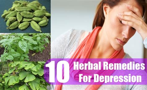 10 herbal remedy for depression how to treat depression