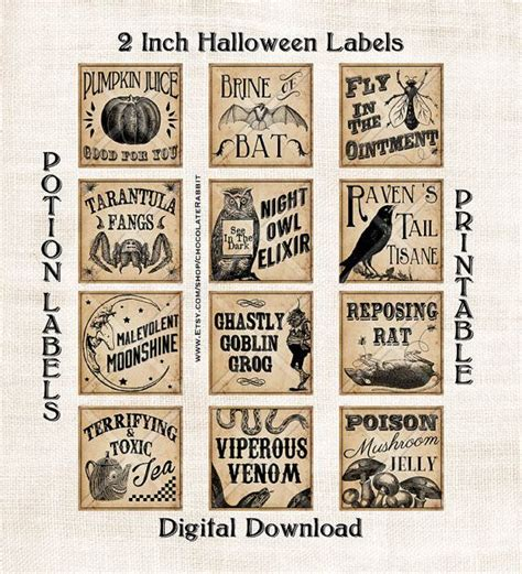 printable potion labels vintage potion labels halloween witch digital download