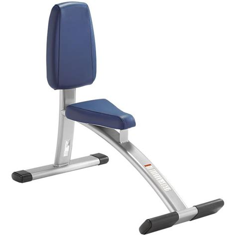 cybex bench cybex free weights utility bench