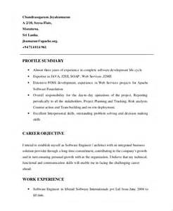 Resume Summary Format by Resume Profile Exle 7 Sles In Pdf Word