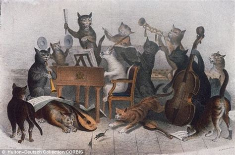 Nursery Rhymes About Cats by Wisconsin Madison University Scientists Create Bach For