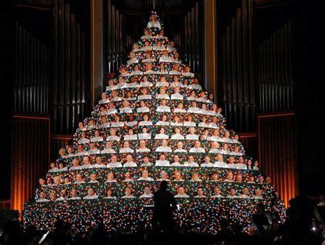where to buy living christmas trees living tree at baptist church al