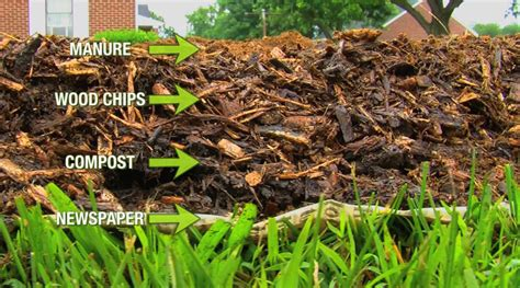 wood chip mulch vegetable garden how to grow a back to organic garden back to
