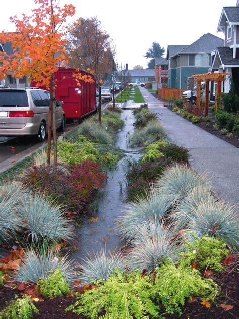 The Rain Garden Retrofit   Green Futures
