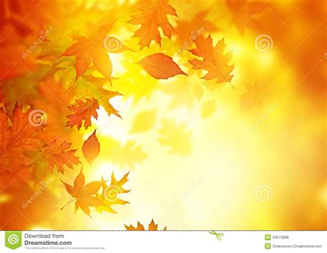 background design leaves autumn falling leaves stock photo image of pure natural