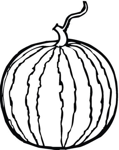 watermelon plant coloring page coloriage melon d eau coloriages 224 imprimer gratuits